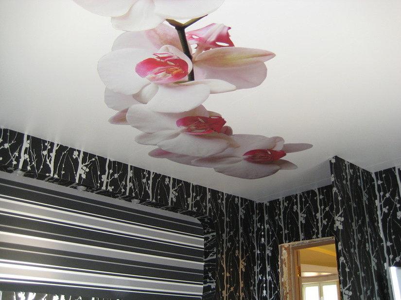 Натяжной потолок с фотопечатью цветов