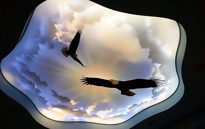 Натяжной потолок с фотопечатью орлов