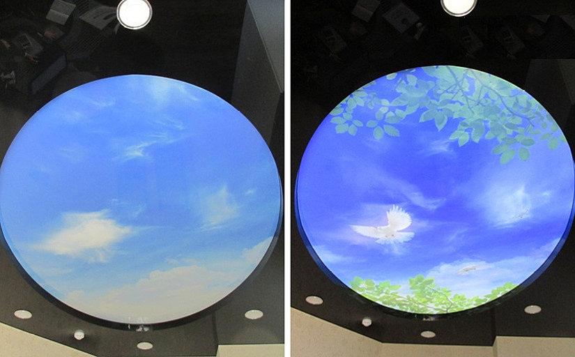 Потолок Double Vision с двойным рисунком