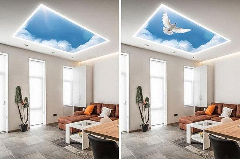 Потолок Double Vision в жилом интерьере