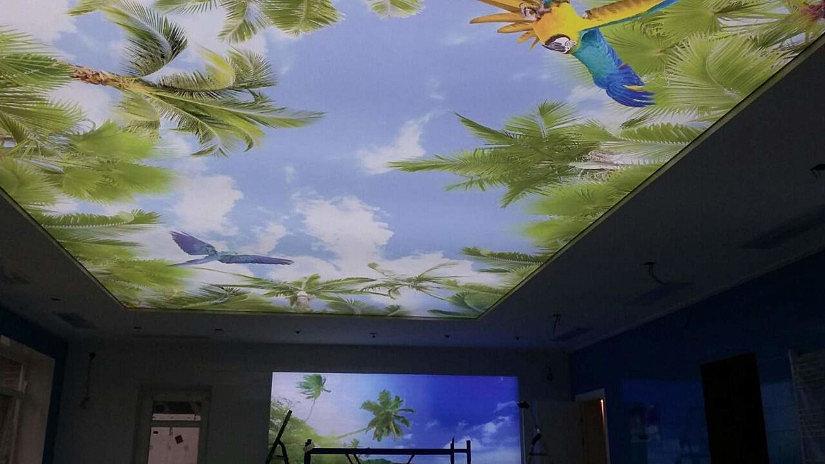 Натяжной потолок Double Vision – удивительная конструкция, которая обладает беспрецедентными качествами