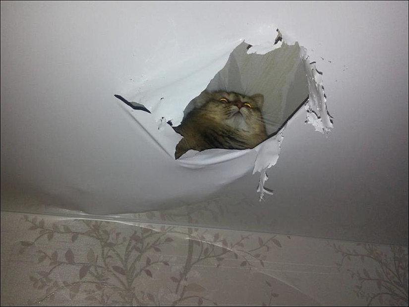 заклеить натяжной потолок