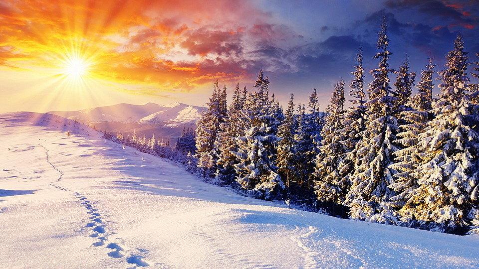Изображение зимнего пейзажа для нанесения на потолок