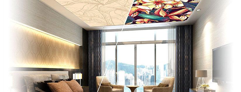 Double Vision натяжной потолок